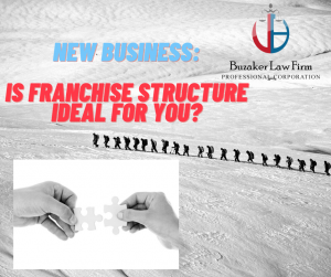 how to find the right franchise structure for you
